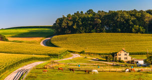 Horse farm and country road on a hill in rural York County, Penn Stock Images