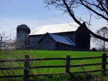 Horse Farm Stock Photo