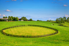 Horse farm fences Royalty Free Stock Images