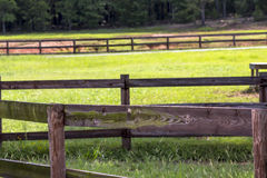 Horse Farm Royalty Free Stock Photography