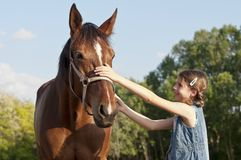 Horse on the farm with girl close Royalty Free Stock Photo