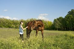 Horse on the farm with girl Royalty Free Stock Photos