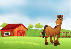 A horse at the farm. Illustration of a horse at the farm Stock Image