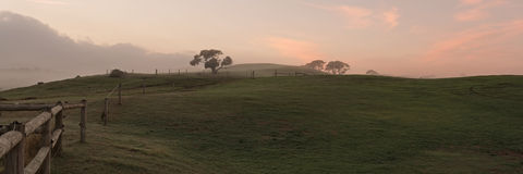 Horse farm panorama Royalty Free Stock Photography