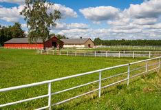 Horse farm. Rural view of horse farm with stable buildings and green pasture bordered with fence Stock Photography