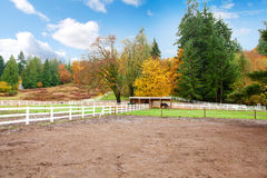 Horse farm with white fence and fall colorful leaves. Stock Images