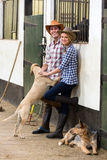 Horse farming couple Stock Images