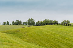 Free Horse Fence On Rolling Hills In Kentucky Stock Photo - 95116880