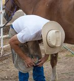 Horse Ferrier Shoeing stock photos