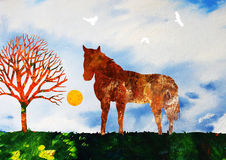 Horse in a field. Color illustration of a relaxed horse standing in a field of flowers in nature Royalty Free Stock Photography