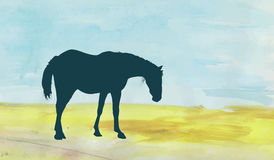 Horse on the field. Standing horse silhouette over a watercolor field Royalty Free Stock Image