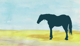 Horse on the field. Standing horse silhouette over a watercolor field Stock Images