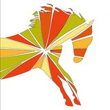 Horse fine  silhouette color Royalty Free Stock Photography
