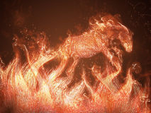 Horse of fire. Jump out of flames Royalty Free Stock Image