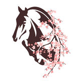 Horse among flowers Stock Photography