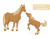 Horse and foal. Cute animals family with mom and baby. Vector illustration Royalty Free Stock Photo