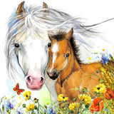 Horse and foal motherhood. background greetings illustration