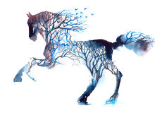 Horse. Forest in the silhouette of a running stallion Royalty Free Stock Images