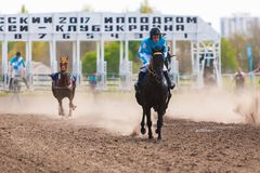 Photo taken at the starting gate for horses Royalty Free Stock Photos