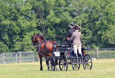 Horse and four wheeled cart. Stock Image