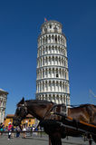 Horse in front of Leaning tower of Pisa Royalty Free Stock Images