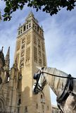 Horse in front of the Seville Cathedral Royalty Free Stock Image