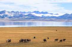 Horse Games at Song Kul Lake in Kyrgyzstan. This photo was taken in Song kul Lake in Kyrgyzstan. The Central Asian country of Kyrgyzstan offers many Royalty Free Stock Photo