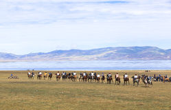 Horse Games at Song Kul Lake in Kyrgyzstan. This photo was taken in Song kul Lake in Kyrgyzstan. The Central Asian country of Kyrgyzstan offers many Stock Image
