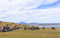 Horse Games at Song Kul Lake in Kyrgyzstan Stock Images