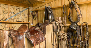 Horse Gear Stock Image