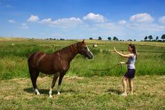 Horse with girl Stock Photos