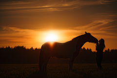 Horse and Girl at Sunset. A silhouette of a horse nuzzling a slim young woman against a beautiful golden sunset Stock Photography