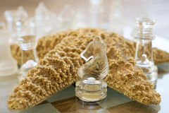 Horse of a glass chessboard Stock Image