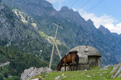 Horse grassing near Bunker in front of Albanian mountains scenery. Taken during a hike from Theth to Valbona over the Valbona pass Royalty Free Stock Image