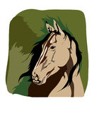 Horse on a green background. Vector drawing of a horse Stock Images