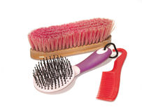 Horse grooming supplies Royalty Free Stock Photo