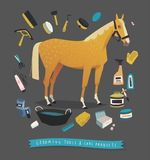 Horse grooming tools. Essential horse care products Stock Photography