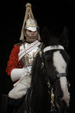 Horse Guard Royalty Free Stock Images