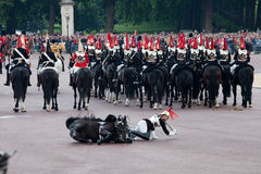 Horse guard fall. LONDON - JUNE 11: Royals horse Guard falls off horse at Trooping the Colour ceremony in London June 11, 2011. Ceremony is performed by stock photo