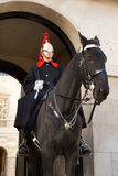 Horse Guard in London Royalty Free Stock Images