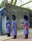 Horse Guards Inspection Royalty Free Stock Images