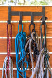Horse halters hanging in barn Stock Photos