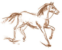 Horse. Hand-drawn Royalty Free Stock Images