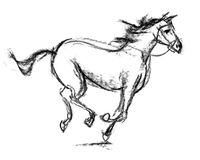 Horse. Hand-drawn Stock Photos