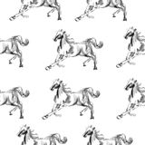 Horse hand drawn graphic illustration painted pencil  on white, seamless vector pattern, decorative background Royalty Free Stock Image