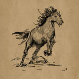 Horse hand drawn realistic sketch on craft Royalty Free Stock Photos