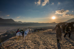 Horse and Handler at Sunrise in the desert Stock Photo