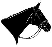Horse harness. Black horse profile head with harness - detailed vector design Royalty Free Stock Photo