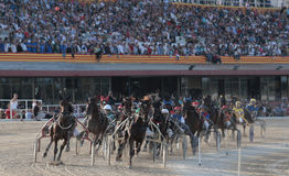 Horse harness front. Riders compete during a horse harness chariots race in Palma de Mallorca´s hippodrome, wide view Stock Photography