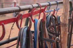 Horse harness in Monument Valley navajo tribal park, Arizona. In Monument Valley Tribal Park, Arizona, there are navajo natives who offer horse ridings to the Stock Image